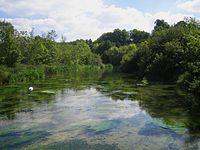 River Itchen Ovington.jpg