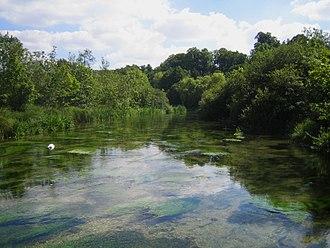 River Itchen, Hampshire - The Itchen near Avington