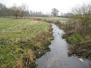 River Misbourne - River Misbourne near Chalfont St Giles