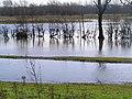 River Soar Flood Plain from Birstall Road - geograph.org.uk - 565168.jpg