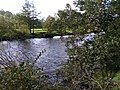 River Swale near Feetham Wood - geograph.org.uk - 276584.jpg