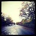 Road - panoramio (124).jpg