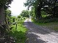 Road at Milltown - geograph.org.uk - 1368682.jpg