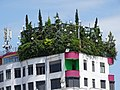 Rooftop Garden on Apartment Block - Tirana - Albania (42748136282).jpg