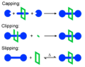 Rotaxane methods of synthesis commons.png