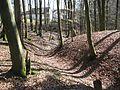 Rothenfels (Deining) (4).jpg