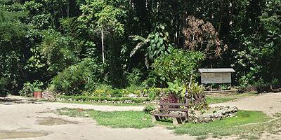 A spot of gardening for granny kim - 1 5