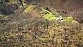 """Ruinele cetății medievale """" Cetatea Neagră"""", Codlea.jpg"""