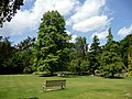 Rylstone Park, Shanklin, Isle of Wight - geograph.org.uk - 1708801.jpg