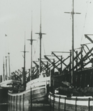 SS Henry Chisholm.png
