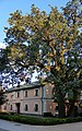 Saint Jonas Monastery 2 (Kiev).jpg