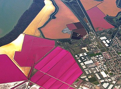 Salt ponds SF Bay crop.jpg