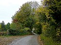 Salter's Lane 2 - geograph.org.uk - 1550467.jpg