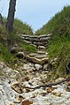 Sandon Beach Stone Path.jpg
