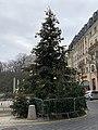 Sapin Noël Grand Place - Le Plessis-Robinson (FR92) - 2021-01-03 - 1.jpg