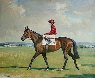 Sariska (horse) British-bred Thoroughbred racehorse