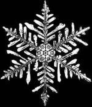 Pattern - Snowflake sixfold symmetry