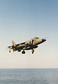 Sea Harrier (9703042802) (2).jpg
