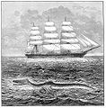 Sea serpent 1877.jpg
