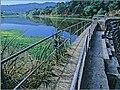 Searsville Dam.jpg