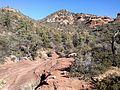 Secret Canyon Trail, Sedona, Arizona - panoramio (32).jpg
