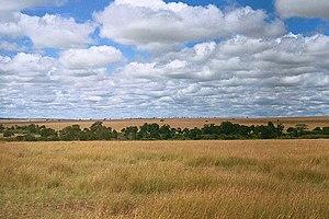 IUCN protected area categories - Image: Serengeti
