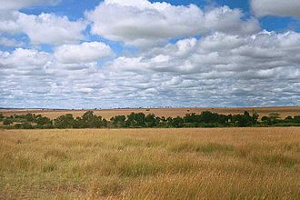 IUCN protected area categories - Image: Serengeti