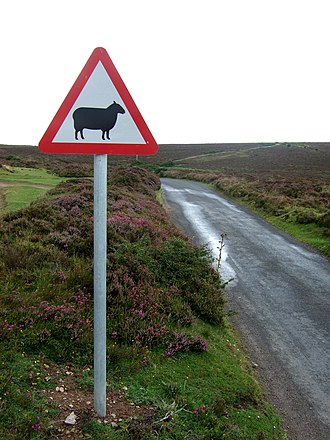 Comparison of traffic signs in English-speaking countries - Sheep road sign in the United Kingdom.