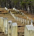 Shelby Springs Confederate Cemetery - Shelby County, Alabama.jpg
