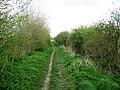 Sheltered footpath - geograph.org.uk - 782529.jpg
