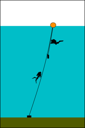 Diving shot - Top tensioned shotline: The line passes through a ring at the float and is tensioned by a smaller weight hanging from it. This weight may be hooked to the main part of the line by a sliding clip to restrain it from swinging.