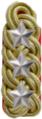 Shoulder board rank insigna for superintendent supervisor of japanese police.png