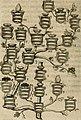 Siluestri á Petrasancta Symbola heroica (1682) (14562451927).jpg