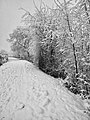 Sinigo Italy the snow in South Tyrol Photo by Giovanni Ussi (72).jpg