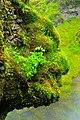 Skogafoss Face - panoramio.jpg