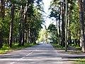 Slokas iela - panoramio (44).jpg
