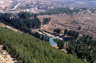 al-Khader Municipality type B in Bethlehem, State of Palestine