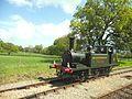 Southern Railway Class A1X W8 Wootton.jpg