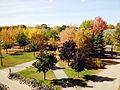 Splendid fall - panoramio.jpg