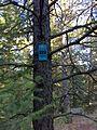 Spokane, WA, USA - panoramio (26).jpg