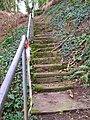 Spring Steps - geograph.org.uk - 360746.jpg