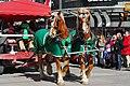 St Patrick's Day DSC 0423 (8566333555).jpg