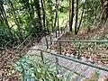 Stairs to Barron River in Kuranda, Queensland, July 2020.jpg