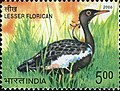 Stamp of India - 2006 - Colnect 158989 - Lesser Florican Sypheotides indicus.jpeg