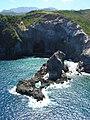 Starr-050307-4896-Solanum americanum-habitat-Kaemi-Maui (24372544979).jpg