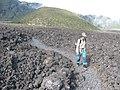 Starr-110810-7970-Dianella sandwicensis-habitat with Kim-Trail from Oili Puu to Kapalaoa HNP-Maui (24476248713).jpg