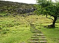 Steps to Slemish - geograph.org.uk - 880210.jpg