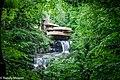 Stewart Township - Fallingwater - 20180528101607.jpg