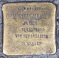Stolperstein Martin-Luther-Str 12 (Schöb) Moritz Galliner.jpg