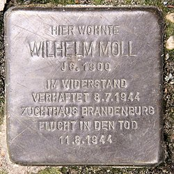 Photo of Wilhelm Moll brass plaque